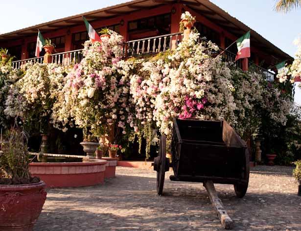 Vallarta Botanical Gardens -20