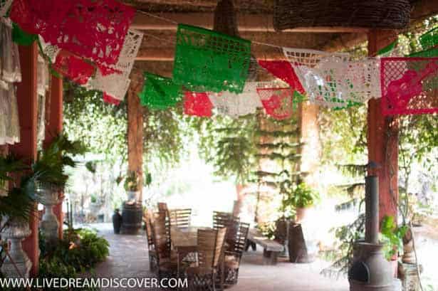 Vallarta Botanical Gardens -24