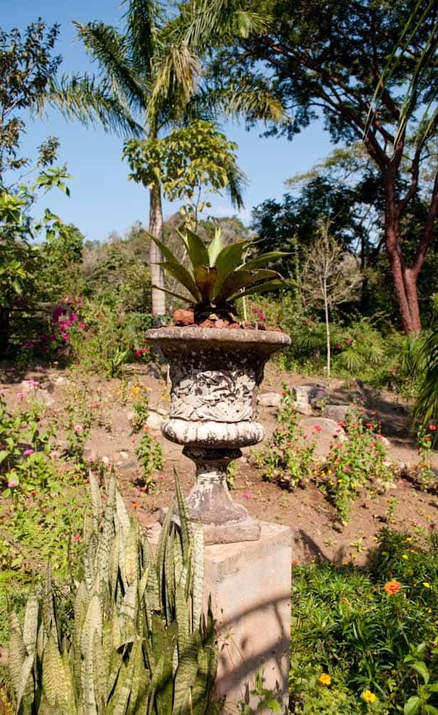 Vallarta Botanical Gardens -3