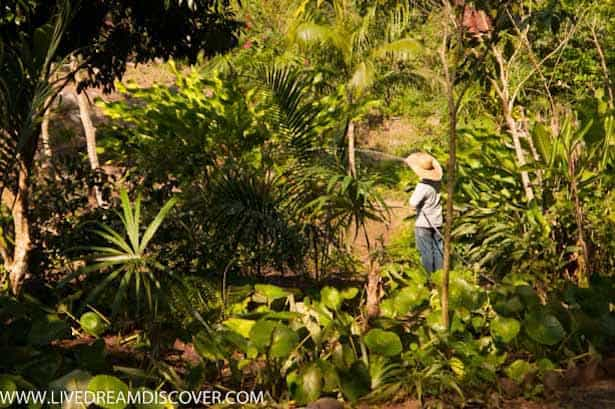 Vallarta Botanical Gardens -8