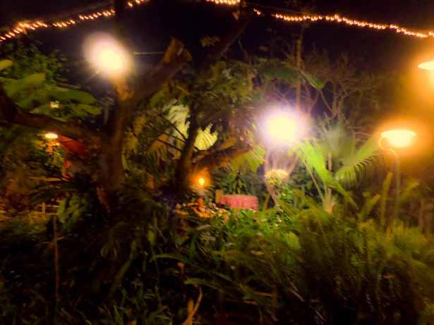 Fairy land at Il Jardin