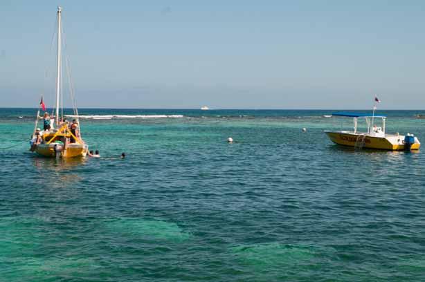 Coral Reef Caye Caulker