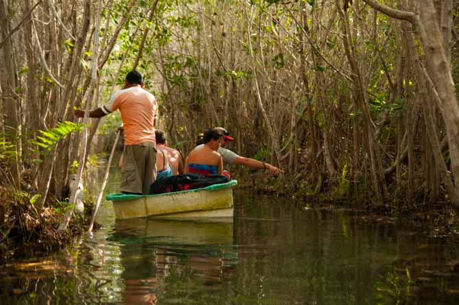 Boating through the mangroves. Journey from Belize to Mexico