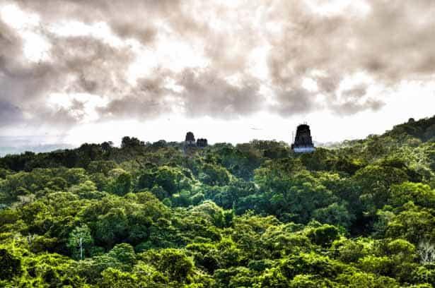 Early morning in Tikal as seen from temple Mundo Perdido