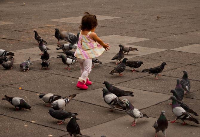 Things to do in Guadalajara Mexico: Plaza de Armas