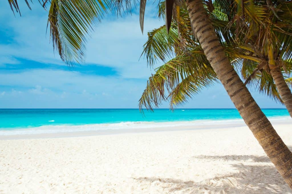 Caribbean beach with white sand, turquoise water and palm trees
