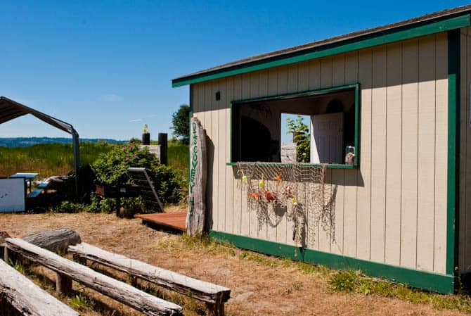 Jetty Island cabin