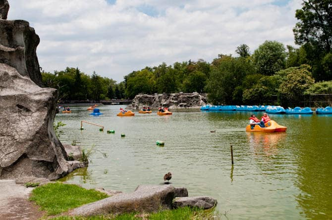 Boating in Chapultepec Park: Guide to Mexico City