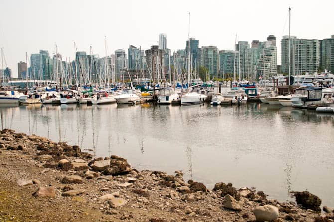 view of downtown is taken from the seawall in Stanley Park