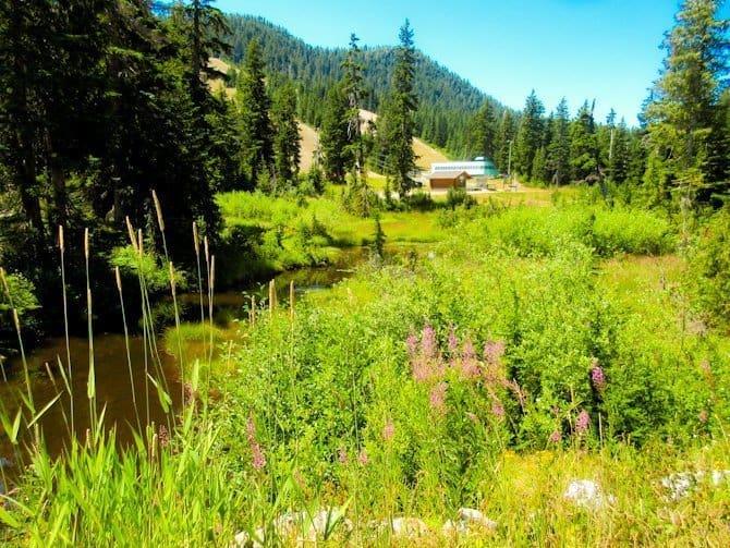 Bowen Lookout Trail, Vancouver