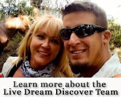 Live Dream Discover about widget