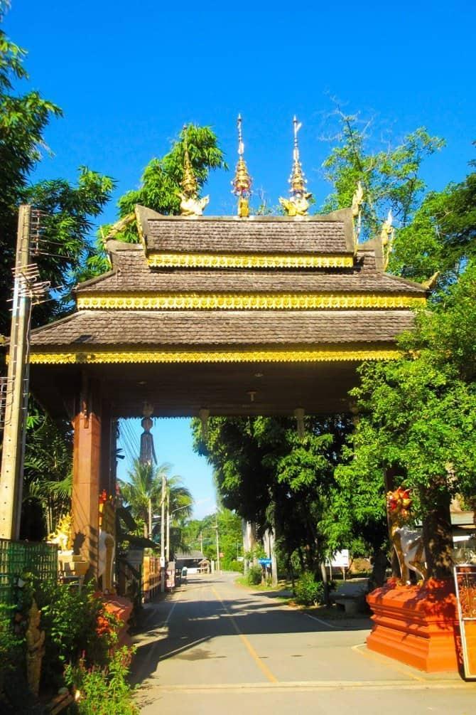 Buffalo Tour of Chiang Mai Wiang Kum Kam