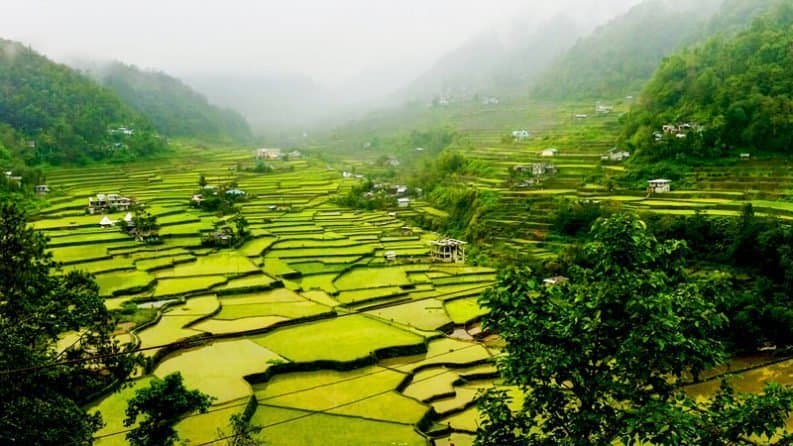 Ultimate Guide to Banaue Rice Terraces