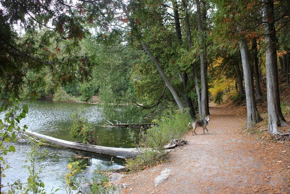 Guelph Ontario best hiking trails