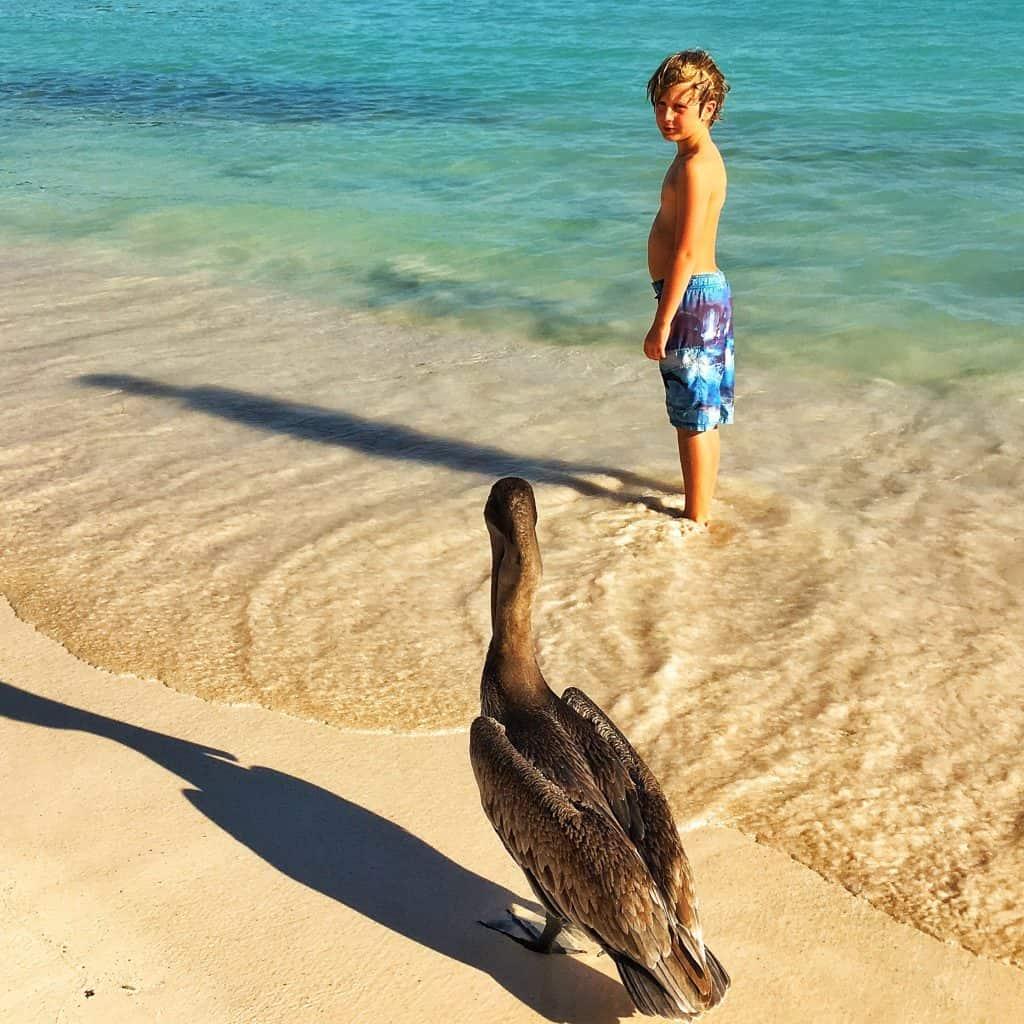 Excursions from Playa del Carmen Akumal