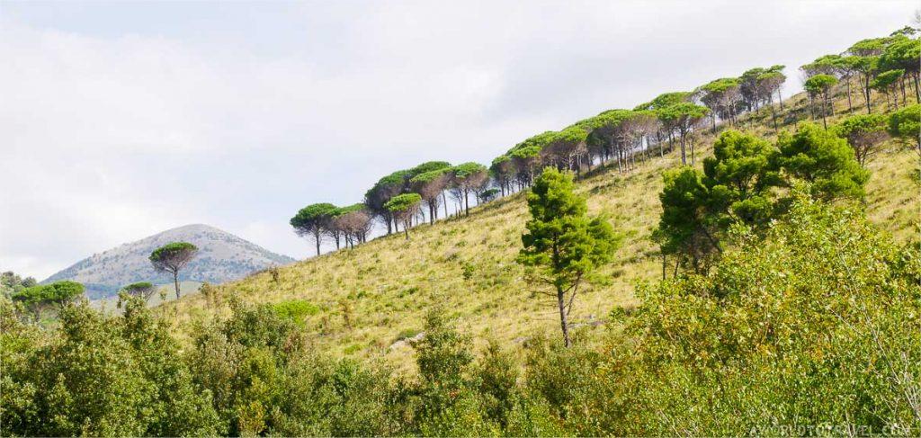 Best hikes in Europe Via Francegina, Italy