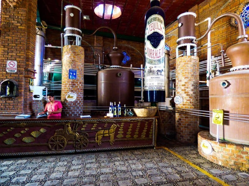 hings to do in Guanajuato: Tequila distillery tour