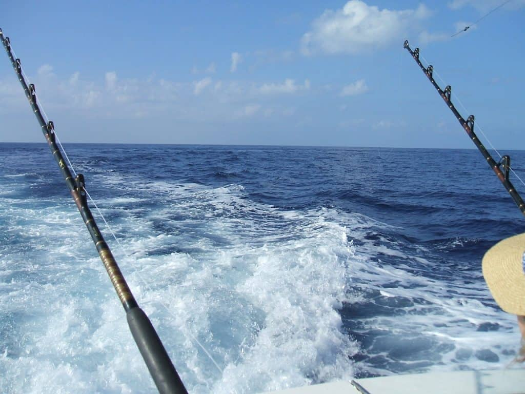 Deep sea fishing in Puerto Vallarta