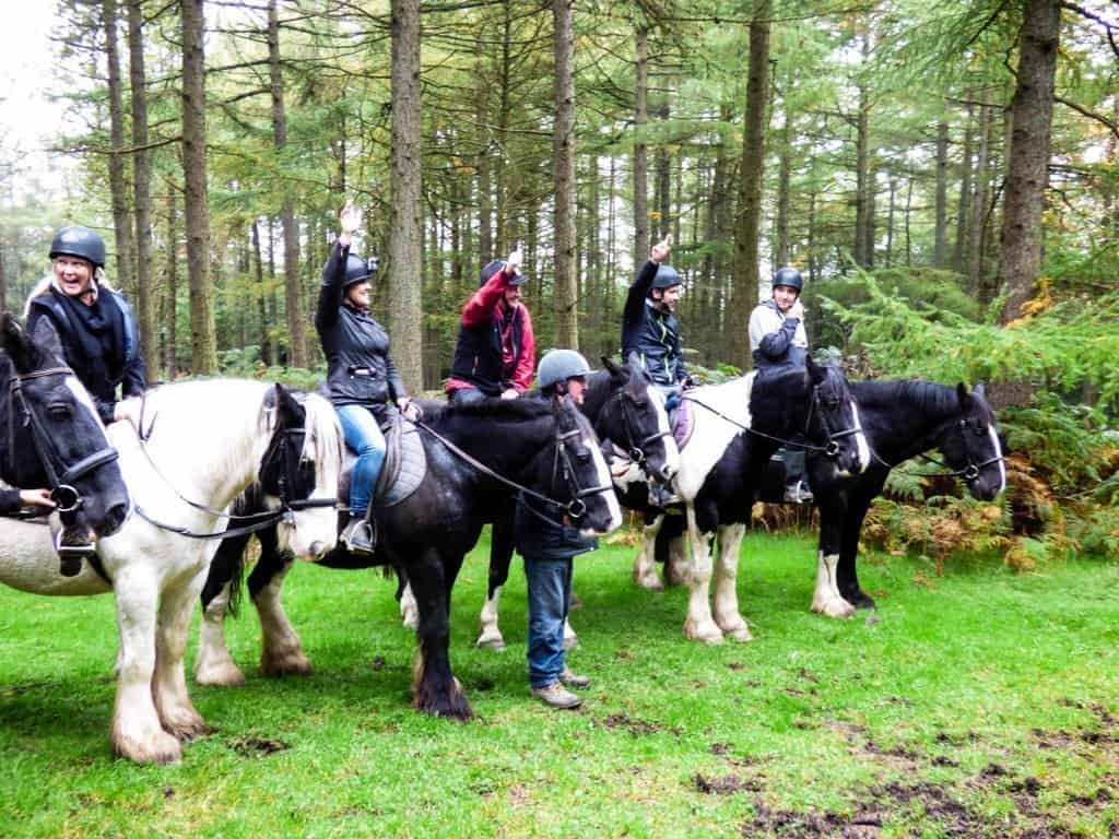 Our group of five sitting on horseback in the woods as we go riding in the Dublin Hills