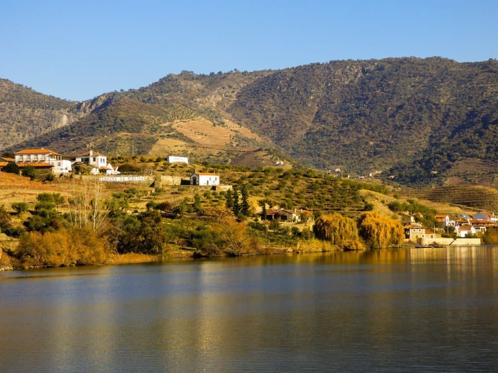 View from Viking Torgil boat on Douro River Cruise