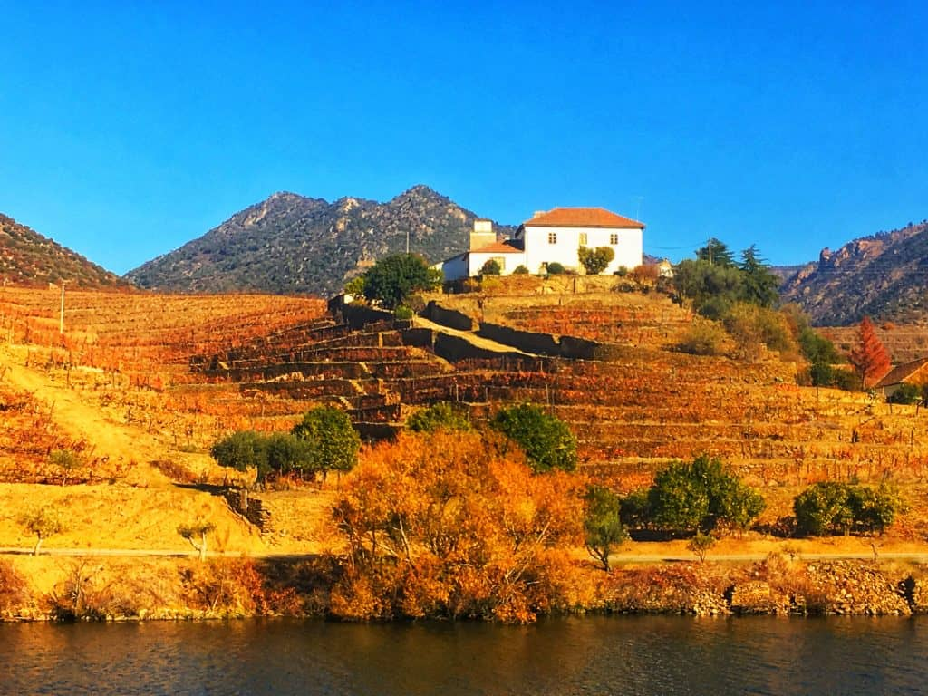 Viking Douro River Cruise