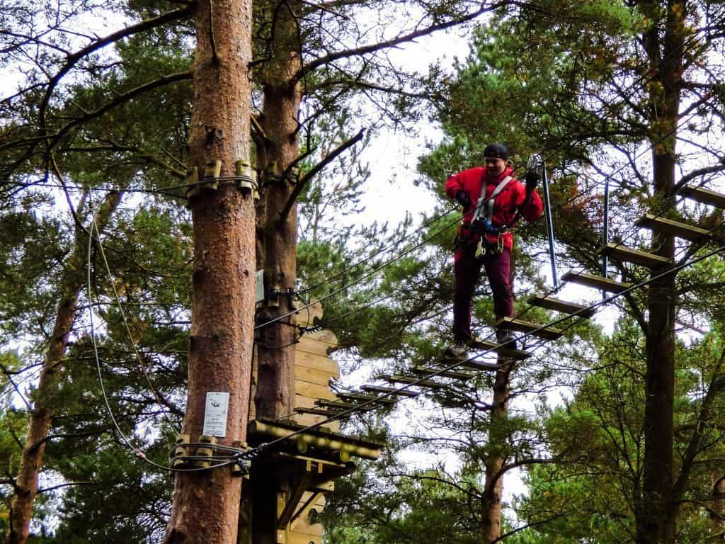 Looking up into the trees at a person in red walking across a hanging bridge at Zipit Adventure Park