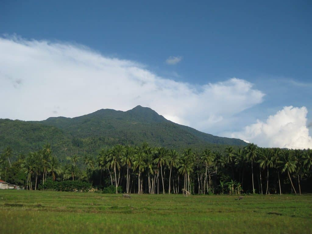 Lush green mountains and palm trees in Camiguin