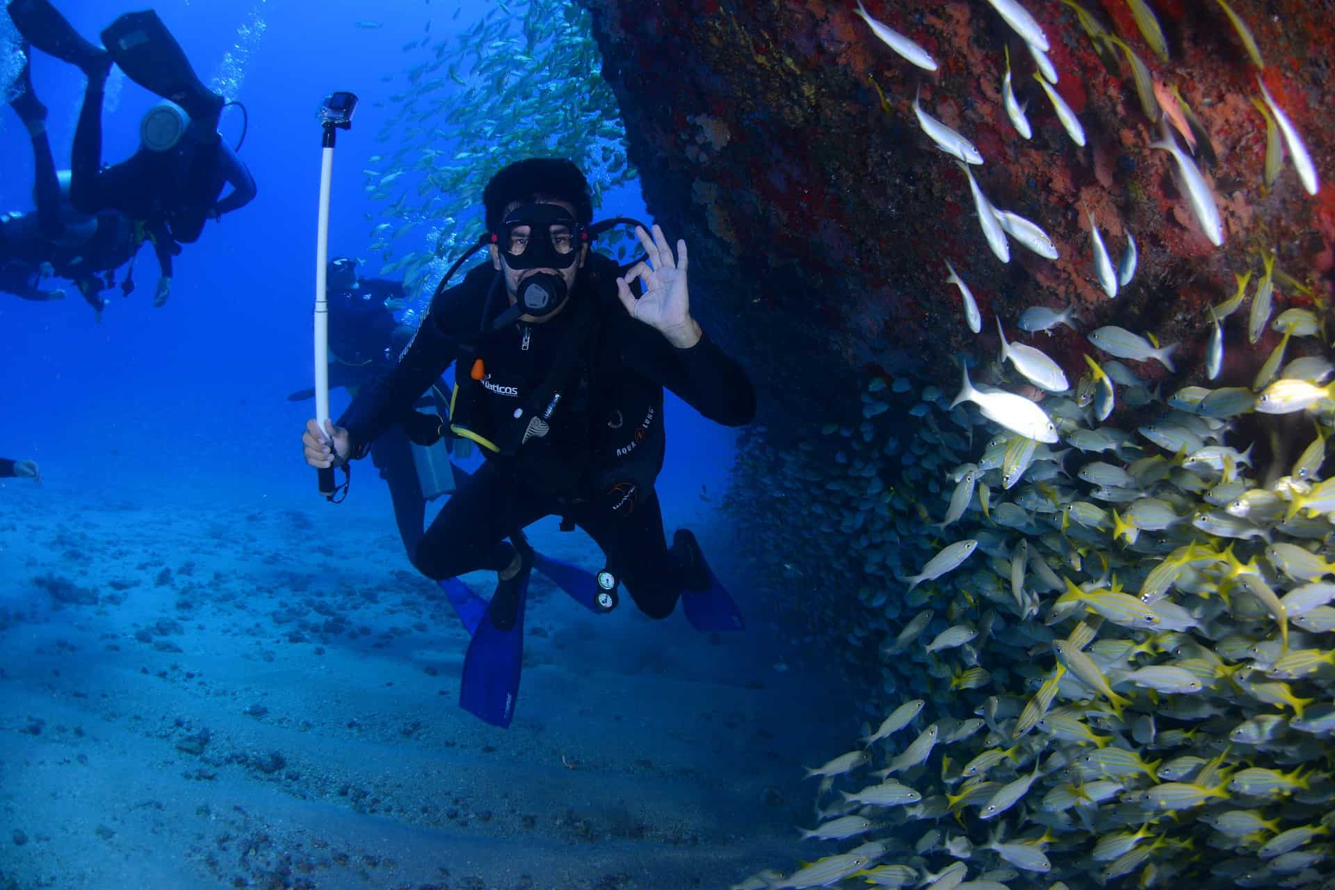 scuba diver under water with fish