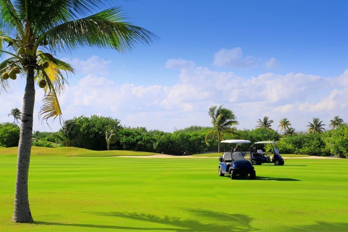 Golf Course Puerto Vallarta