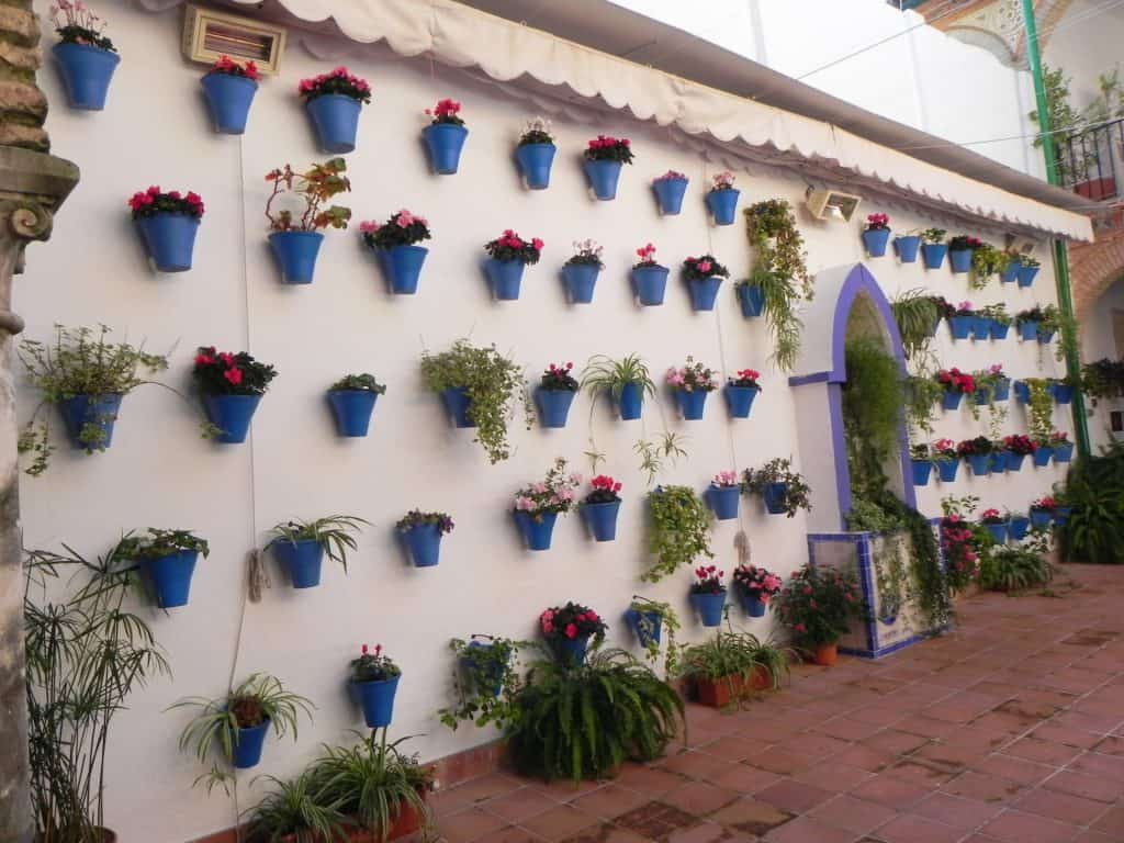 white wall with dozens of small blue flower pots hung on it