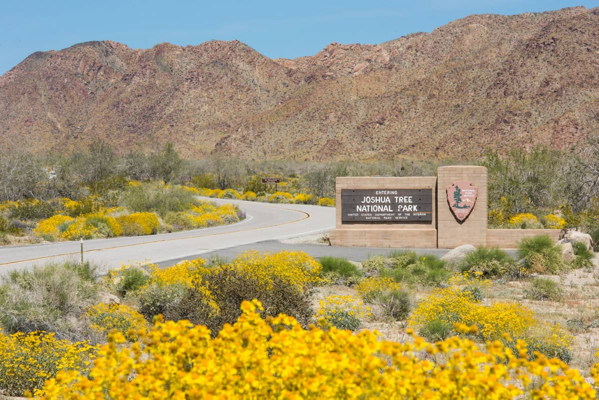 Sign at the entrance to Joshua Tree National Park