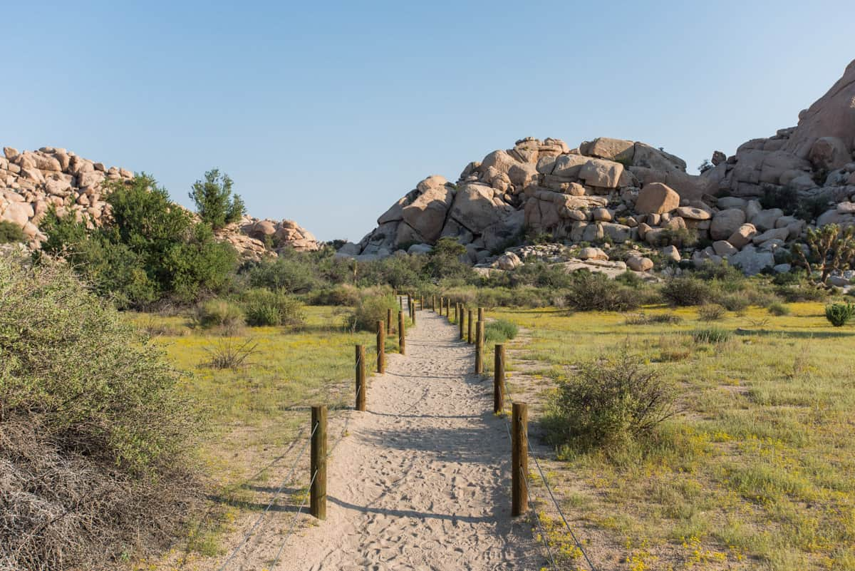 Sandy trail leading to boulders in Joshua Tree National Park