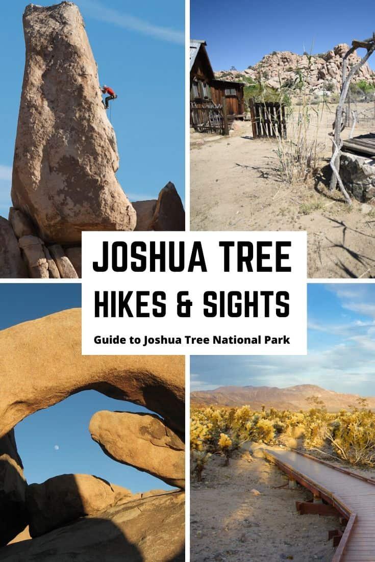 Joshua Tree hikes & sights