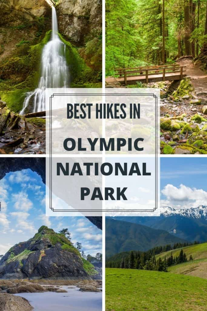 Best Hikes in Olympic National Park, Washington