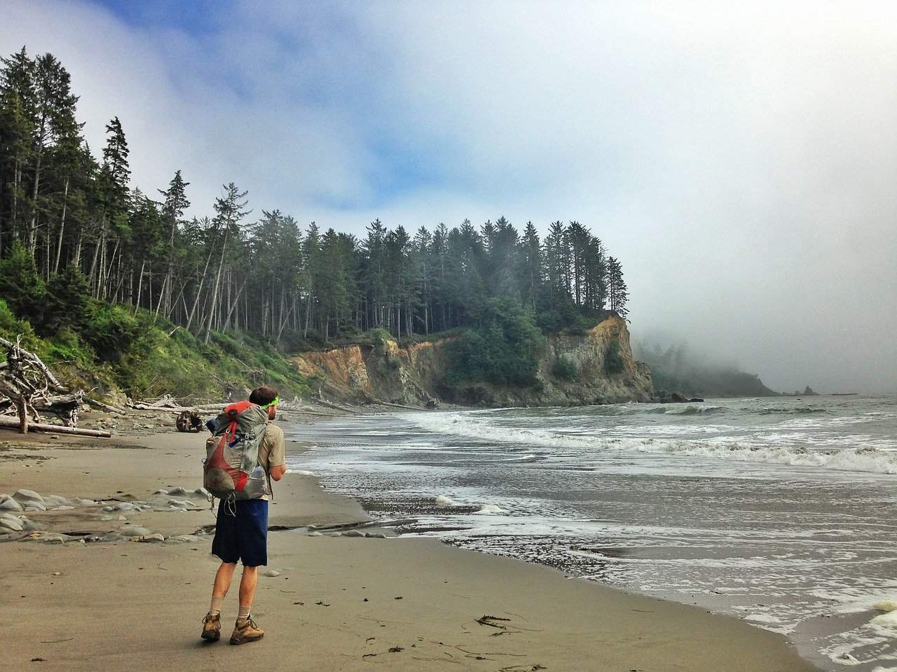 Best hikes in Olympic National Park, WA