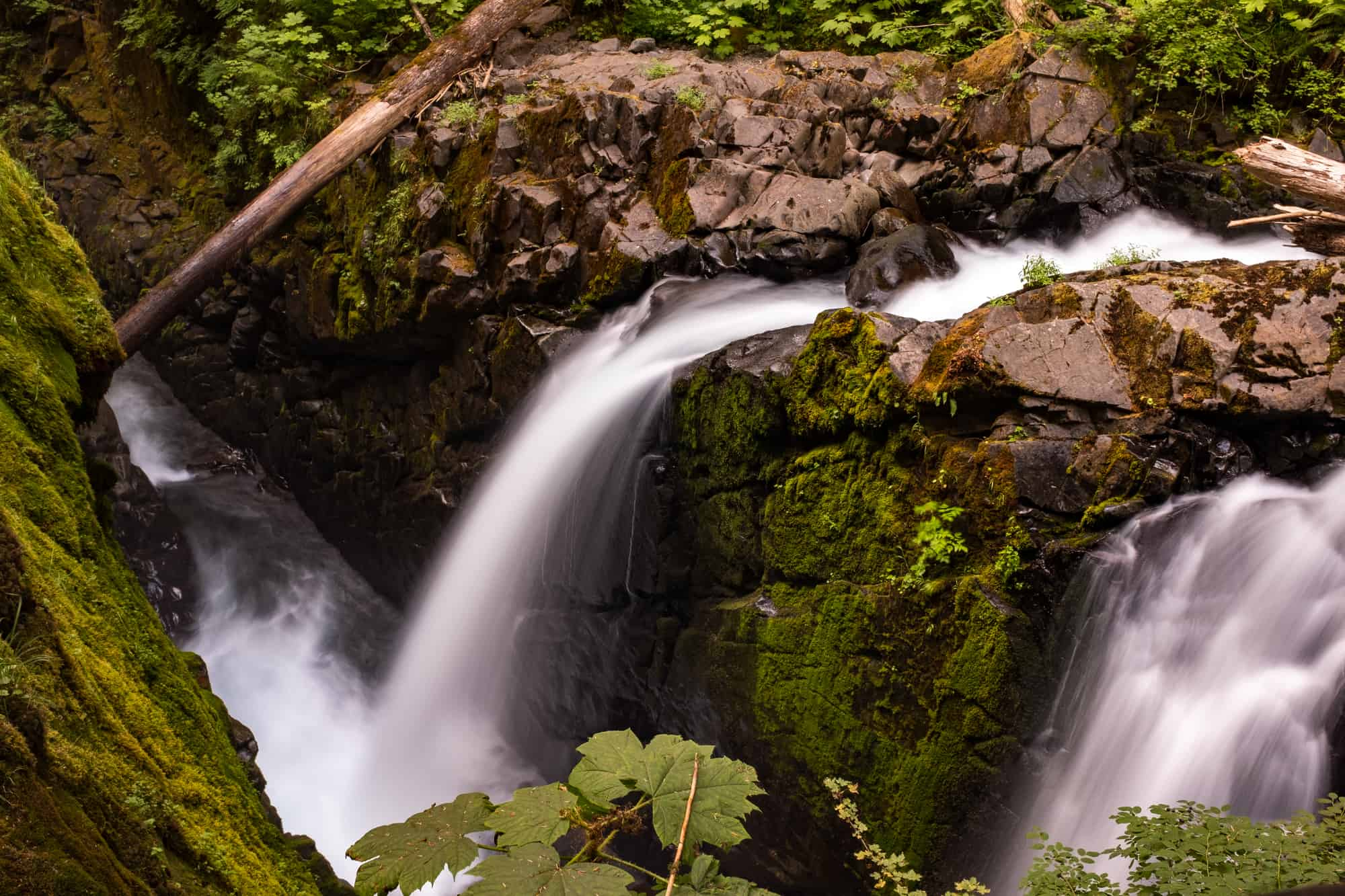 The tumbling waters at Sol Duc Falls, Olympic National Park, Washington, USA, long exposure create a blurred motion to the falls, nobody in the image