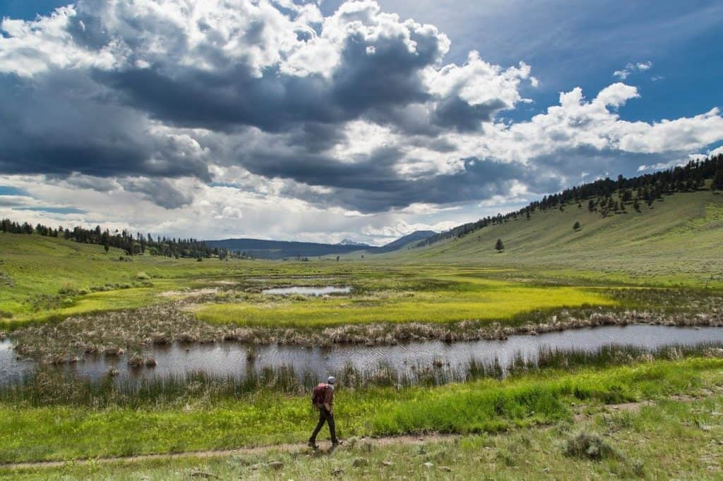 Hiker in Yellowstone in summer