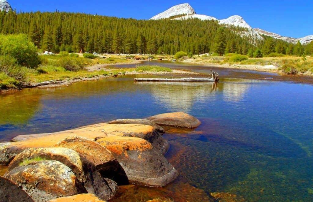 Lake, evergreen trees and mountian at Yosemite National Park