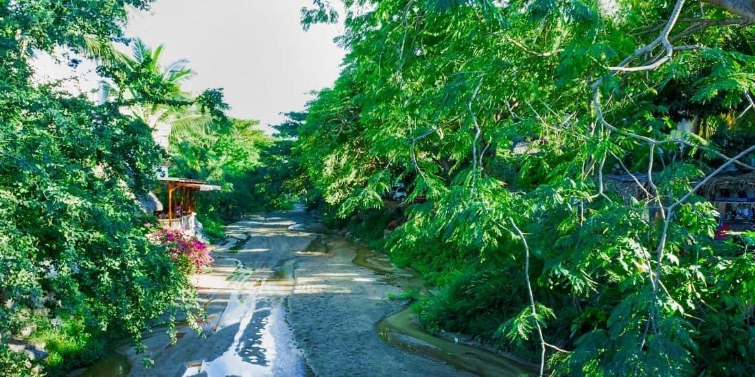 Beach & jungle hike. Things to do in Sayulita Mexico