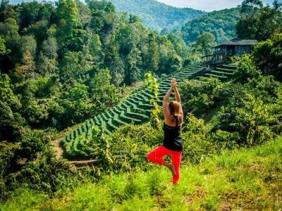 Thai Vegan Retreat Yoga